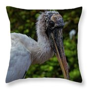 Immature Wood Stork Throw Pillow