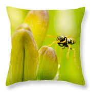 Imminent Landing Throw Pillow