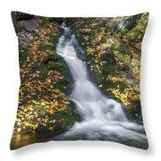 Imp Trail Cascade Throw Pillow