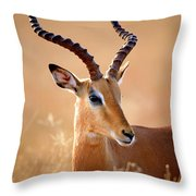 Impala Male Portrait Throw Pillow