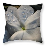Impatience Throw Pillow