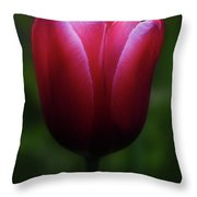 Imperfect Perfection Throw Pillow