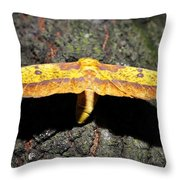 Imperial Night Throw Pillow