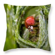 Imposter Ladybug Throw Pillow