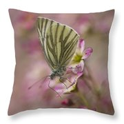 Impression With A Small Butterfly Throw Pillow
