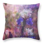 Impressionist Purple And White Irises 6647 Idp_2 Throw Pillow