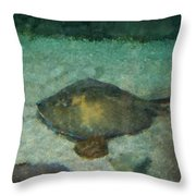 Impressionistic Sting Ray - 003 Throw Pillow