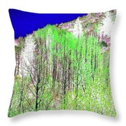 Impressions 12 Throw Pillow