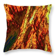 Impressions Of A Burning Forest 11 Throw Pillow