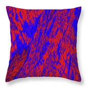Impressions Of A Burning Forest 21 Throw Pillow