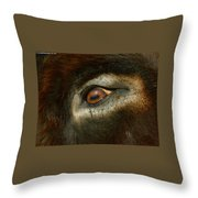 In A Donkey's Eye Throw Pillow