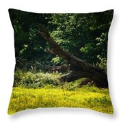 In A Field Of Gold Throw Pillow