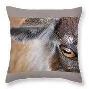 In A Goat's Eye Throw Pillow