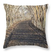 In A Haystack Throw Pillow