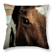 In A Horse's Eye Throw Pillow