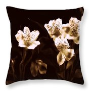 In A Line Throw Pillow by Diane Reed