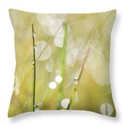 In A Meadow Throw Pillow