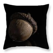 In A Nut Shell Throw Pillow