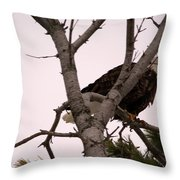 In A Pine Throw Pillow
