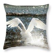 In A Splash Throw Pillow