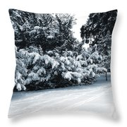 In A Winter Park Throw Pillow