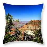 In All It's Splendor By Earl's Photography Throw Pillow