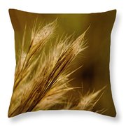 In An Autumn Field - Golden Macro Throw Pillow