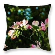 In Another Spring 2013 002 Throw Pillow