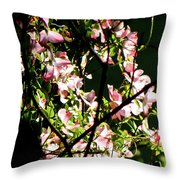 In Another Spring 2013 005 Throw Pillow