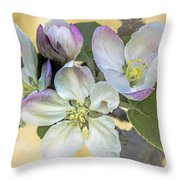 In Apple Blossom Time Throw Pillow