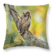 In Color Throw Pillow