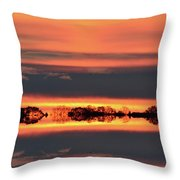 In Color Three  Throw Pillow