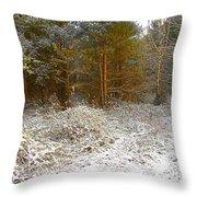 in December Throw Pillow