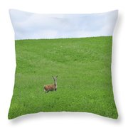 In Fields Of Green Throw Pillow