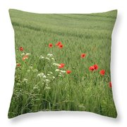 in Flanders Fields the  poppies blow Throw Pillow