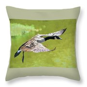 In Flight Impression Throw Pillow