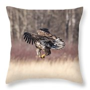 In Flight Snack Throw Pillow