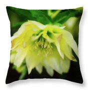 In Her Secret Life Throw Pillow