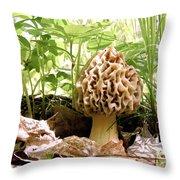 In Hiding - Morel Mushroom Throw Pillow