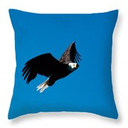 In His Sights Throw Pillow