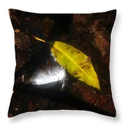 In Life As In Death Throw Pillow