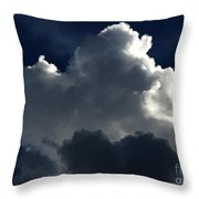In Light Of Things Throw Pillow