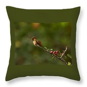In Line With The Branch I Throw Pillow