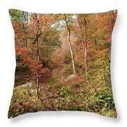 In Love With Autumn Throw Pillow
