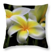 In Love With Butterflies Plumeria Flower Cecil B Day Butterfly Center Art Throw Pillow