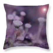 In Mushroom Land  Throw Pillow