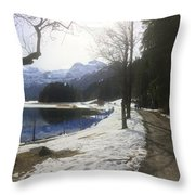 In Nature Long 1 Throw Pillow