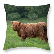 In Need Of A Haircut Throw Pillow