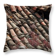 In Need Of A Little Repair Throw Pillow