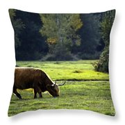 in New Forest Throw Pillow
